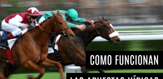 Cómo funcionan las apuestas hípicas en España