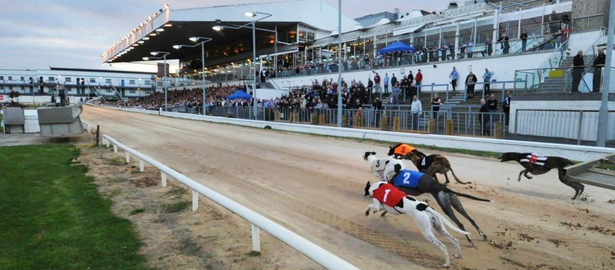 Canódromo Irish Greyhound Board