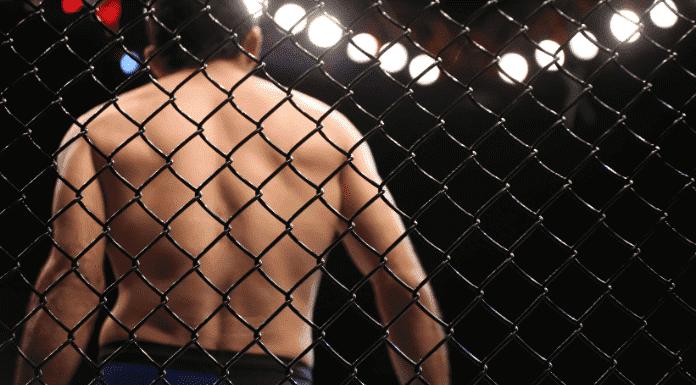 Apuestas MMA - Guía de apuestas deportivas online