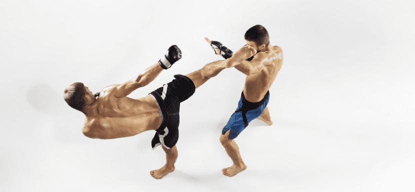 luchadores artes marciales mixtas mma